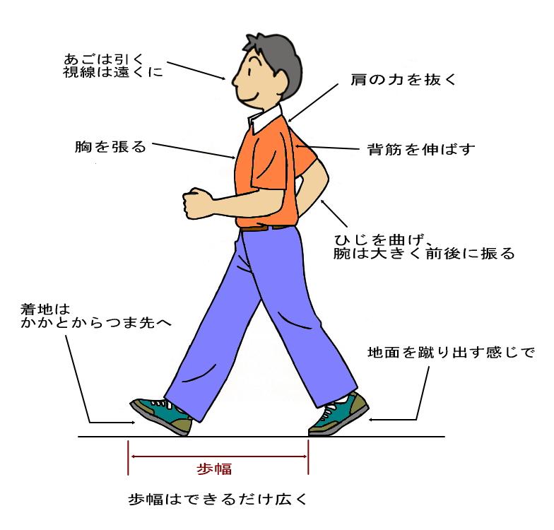 基本的な歩き方/健康政策課/とりネット/鳥取県公式サイト